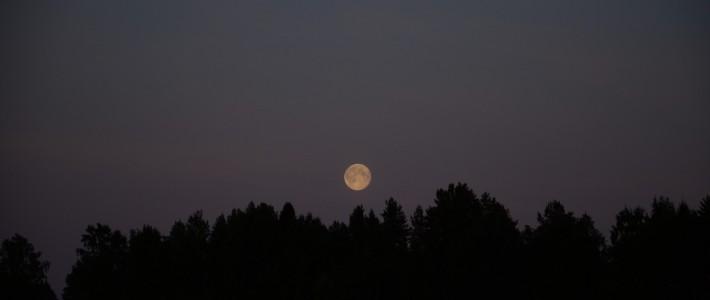 Eino Leinon Nocturne-runon taustoja – Suomalaisen suviyön tuntojen tulkki