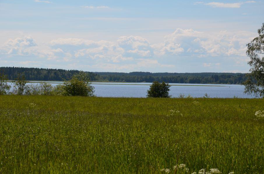 Paltajärvi, jonka keskellä Huuhmonen näkyy  matalana ruovikkona.
