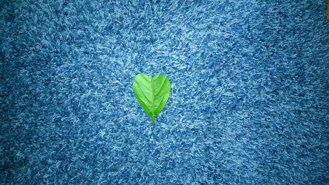 Vihrea sydän voi olla myös  ekologinen symboli.