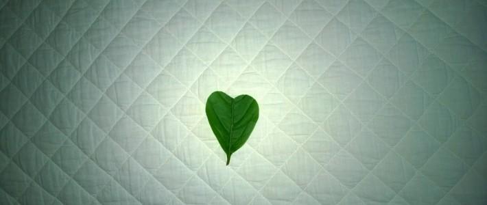 Sydämestä ja sen merkityksestä